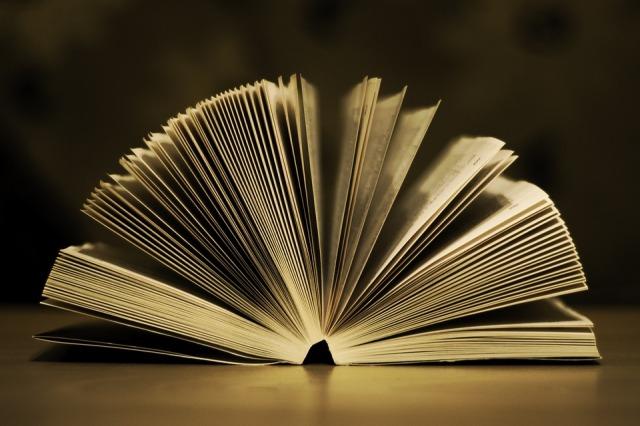 book-933088_960_720.jpg
